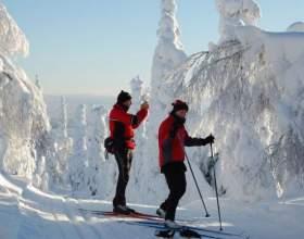 Как собирать крепления на лыжи фото