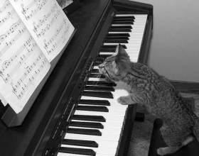 Как сочинить музыку к песне фото