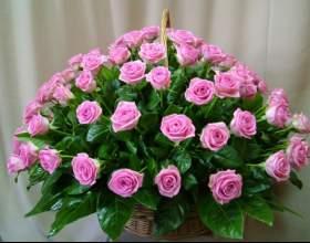 Как сохранить дольше срезанные розы фото