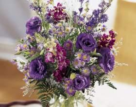 Как сохранить срезанные цветы фото