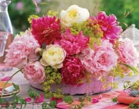 Как сохранить свежесть срезанных цветов фото
