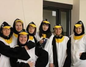Как сшить костюм пингвина фото