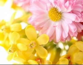 Как стильно и красиво оформить цветами мероприятие фото