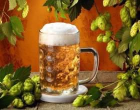 Как сварить хорошее пиво в домашних условиях фото