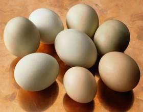 Как сварить яйца всмятку фото