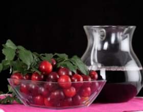 Как сварить компот из брусники фото