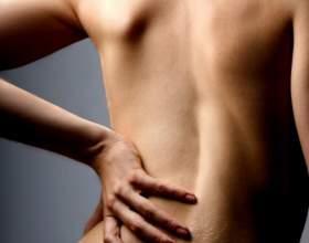 Как тренировать мышцы спины фото