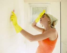Как убрать плесень со стены фото