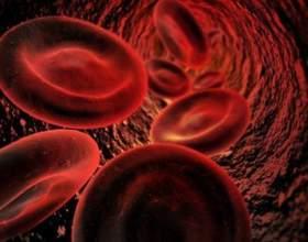 Как уменьшить уровень холестерина в крови фото