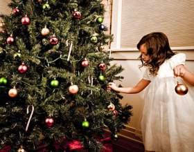 Как установить живую новогоднюю елку фото