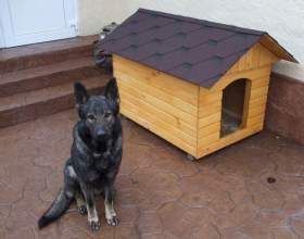 Как утеплить будку для собаки фото