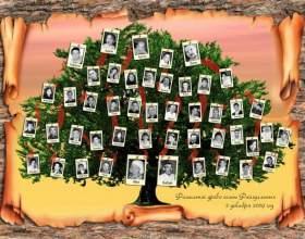 Как узнать корни своей фамилии фото