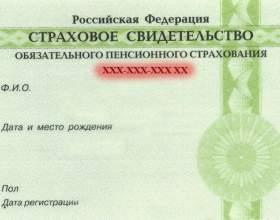 Как узнать номер пенсионного удостоверения фото