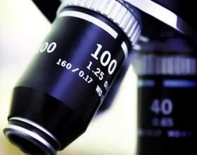 Как узнать резус фактор крови фото