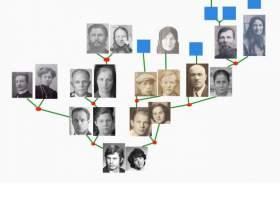 Как узнать родословную по фамилии фото
