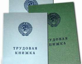 Как внести запись о переводе в трудовую книжку фото