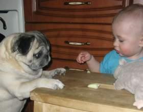 Как воспитать самостоятельность у ребенка фото