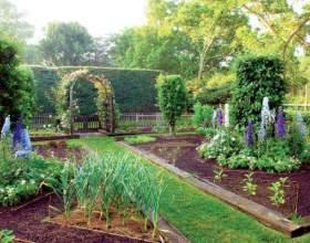 Как все разместить в огороде: сажаем овощи, кусты и деревья фото