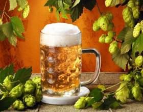 Как выбрать хорошее чешское пиво фото