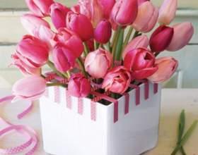 Как выбрать подарок на 8 марта девушке фото