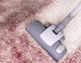 Как выбрать средство для чистки ковров фото