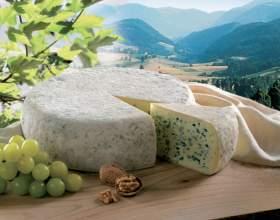 Как выбрать сыр с плесенью фото