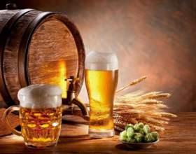 Как выбрать вкусное пиво фото