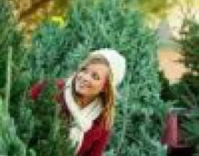 Как выбрать живую елку на новый год фото