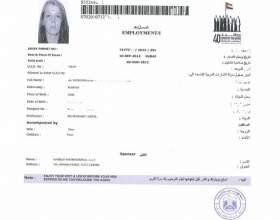 Как выглядит виза в оаэ, как ее получить фото