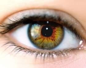 Как вылечить зрительный нерв фото