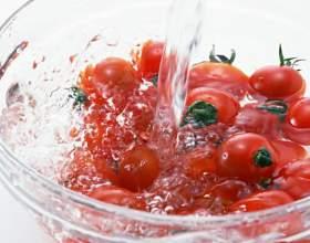 Как вырастить огурцы и помидоры фото