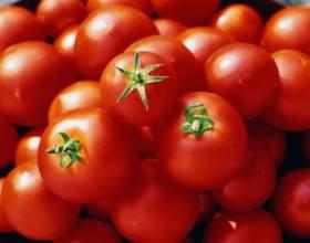 Как вырастить ранние помидоры фото