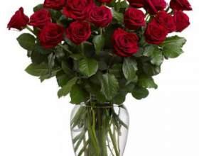 Как вырастить розу из срезанной фото