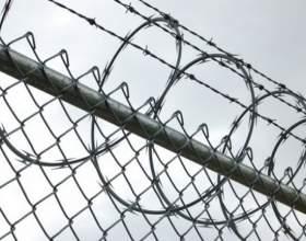 Как выжить в тюрьме фото