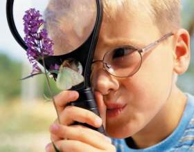 Как заниматься с талантливыми детьми фото