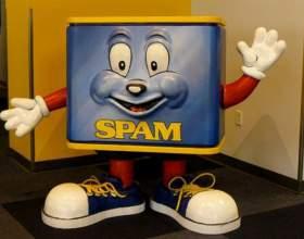 Как защитить свой сайт от спама фото