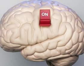 Как заставить мозг работать на все 100% фото