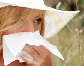 Какая трава помогает от аллергии фото