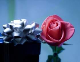 Какие цветы купить коллеге фото