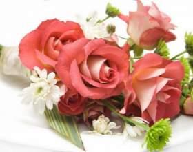 Какие цветы лучше всего дарить фото