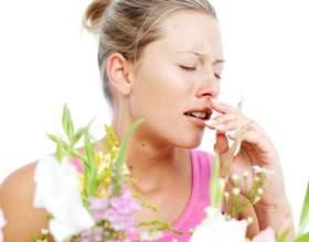 Какие симптомы аллергии существуют фото