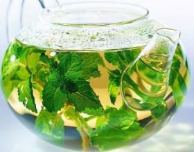 Какие травы пить при больных почках фото