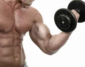 Какие витамины отвечают за рост мышц фото