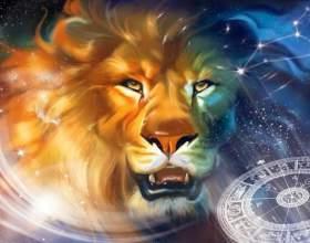 Какие женщины нравятся мужчинам львам фото