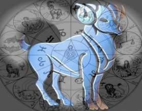 Какие знаки зодиака подходят тельцу фото