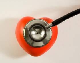 Какое количество крови проходит через сердце за сутки фото