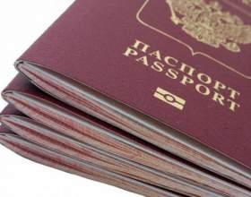 Какого цвета загранпаспорт у россиян фото