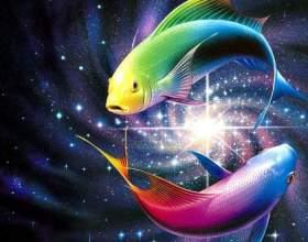 Какой знак зодиака подходит женщине-рыбе фото