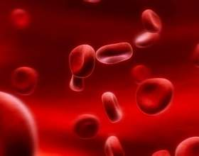 Каковы нормы анализа крови фото
