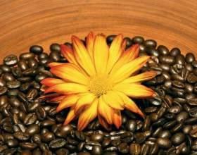 Кофейные скрабы фото